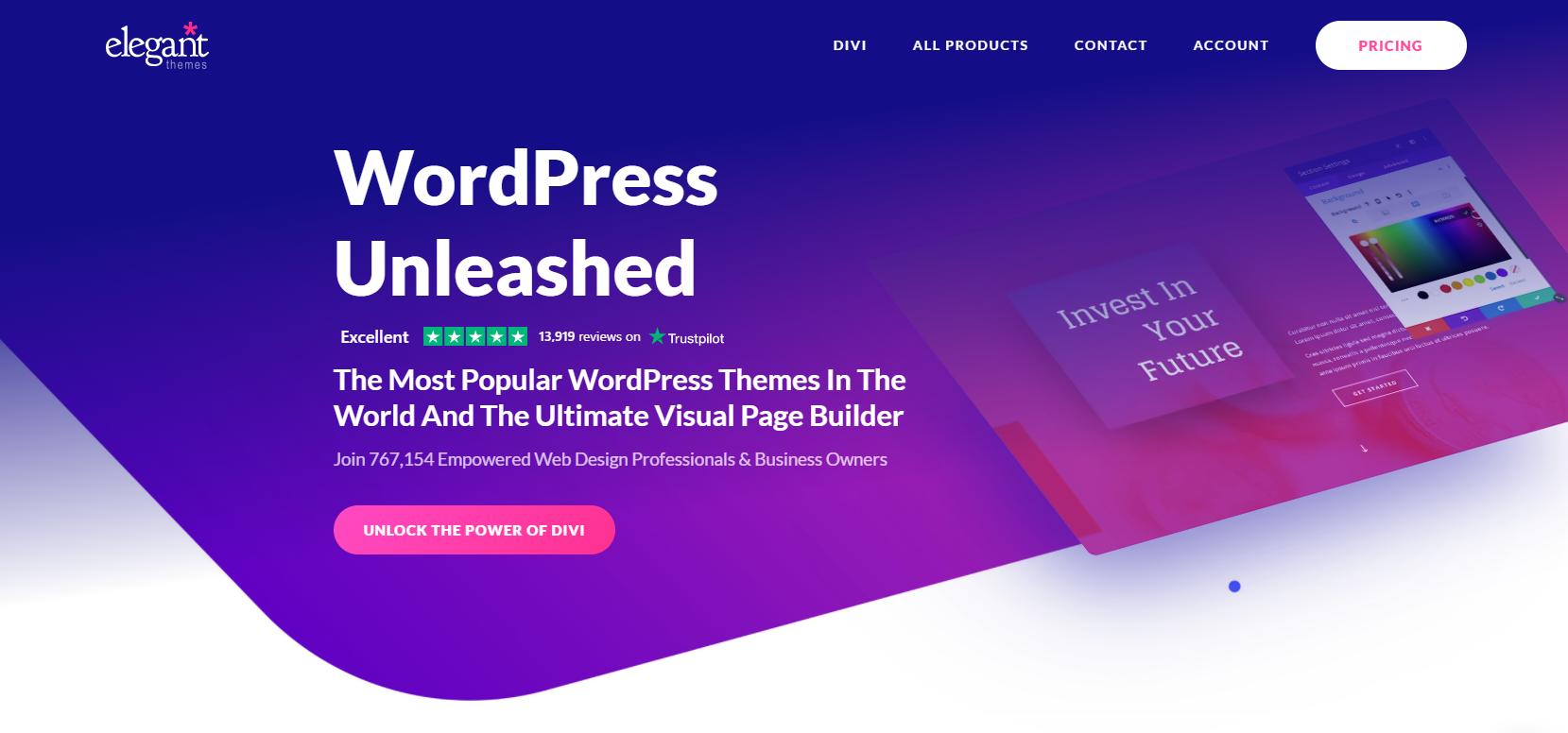 You are currently viewing 5 Gründe, warum Divi für mich das beliebteste WordPress Theme ist!